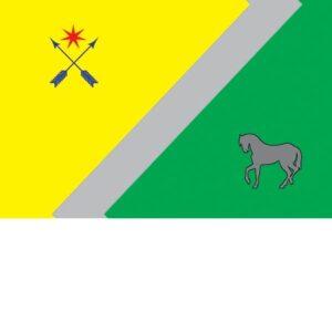 Флаги городов