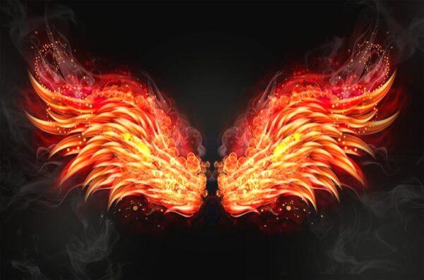 """Фотозона """"Огненные крылья"""""""