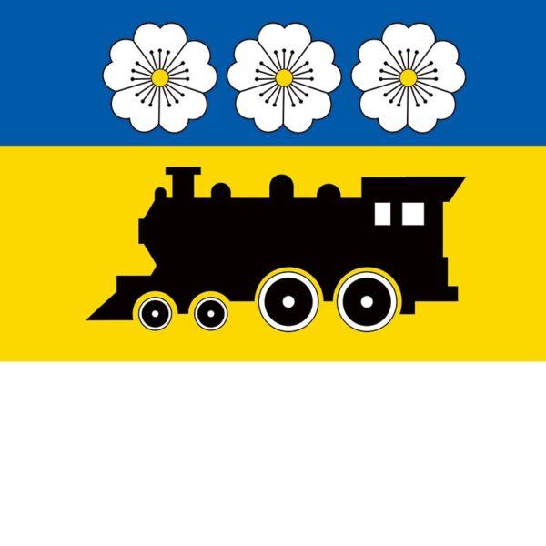 Флаг Синельниково